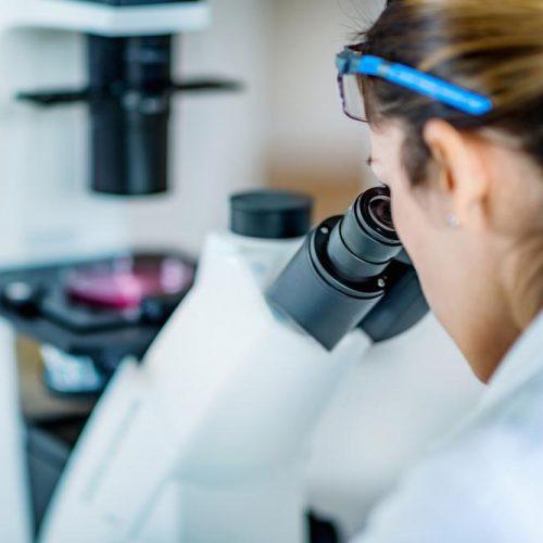 DGP biopsia embrionaria - conceptum_