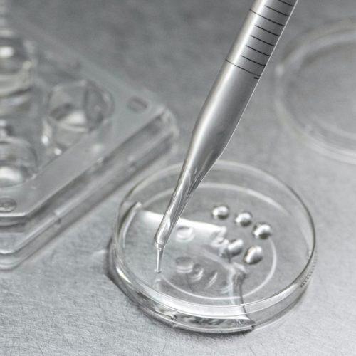 tratamientos-fertilidad-conceptum-500x500